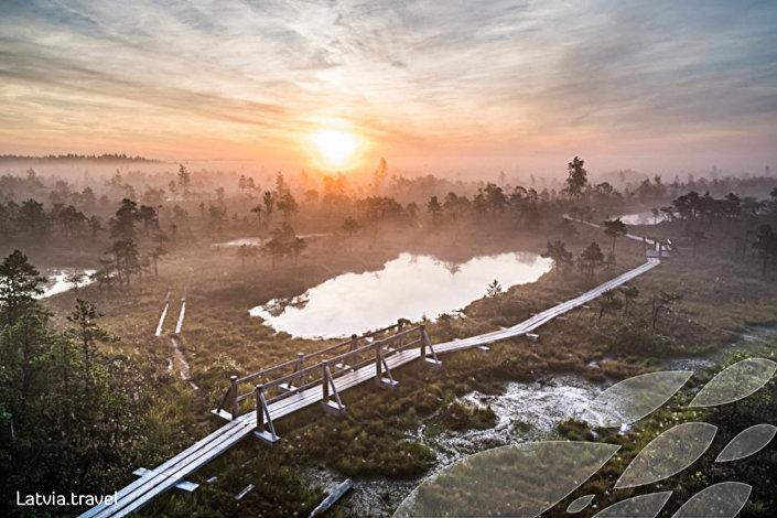 Тропа большого Кемерского болота