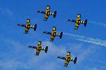 Показательное выступление пилотажной группы Baltic Bees