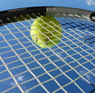 Теннисный мяч на ракетке