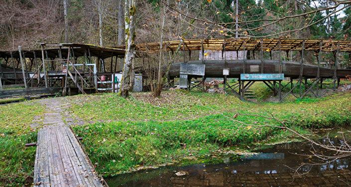Koka tiltiņš pār upi