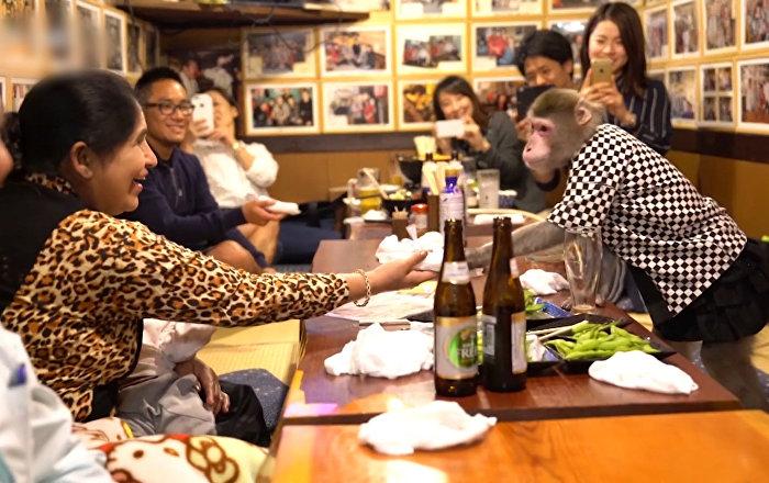 Pērtiķi-viesmīļi Japānas kafejnīcā
