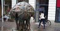 Люди под зонтом во время дождя, памятник непогоде