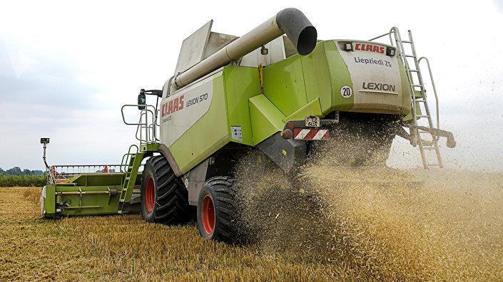 Рубленная солома после очистки зерновой массы выпадает с обратной стороны комбайна