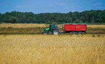 Сельское хозяйство основной вид деятельности в Айзпуте