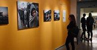 На выставке работ финалистов Международного конкурса фотожурналистики имени Андрея Стенина