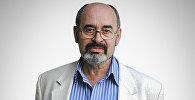 Военный эксперт, полковник в отставке  Виктор Литовкин