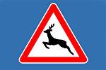Знак Осторожно - дикие животные
