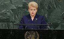 Президент Литвы Даля Грибаускайте на 72-й Генеральной Ассамблеей ООН