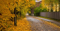 Золотая осень на рижских улицах