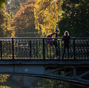 Prieks skatīties: zelta rudens Rīgā