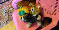 Bellas Mihailovas rotaļlietas