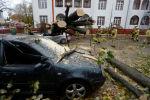 Поврежденные машины в результате падения деревьев в Германии