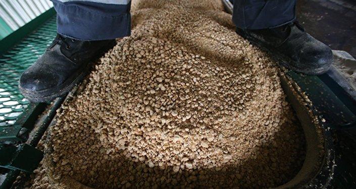 Соевый шрот на фронте погрузки зерновозов