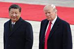 Президент США Дональд Трамп и лидер КНР Си Цзиньпин на встрече в Пекине 9 ноября 2017 г.