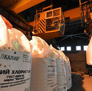 Krievijas minerālvielu ražotājs Uralkalij