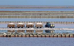 Добыча соли на озере Сасык-Сиваш в районе города Евпатория, Крым