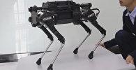 Ķīniešu inženieri demonstrē robotu – suni Laikago