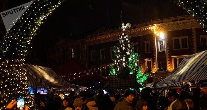 Рождественская ель на Домской площади