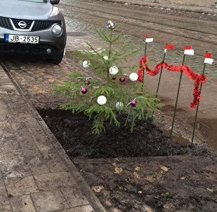 Aktīvisti uzstādīja pie Rīgas domes alternatīvu egli