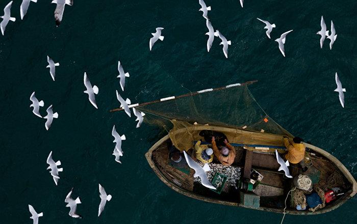 Zvejnieki Melnās jūras zivju piekrastes zvejā Sevastopolē