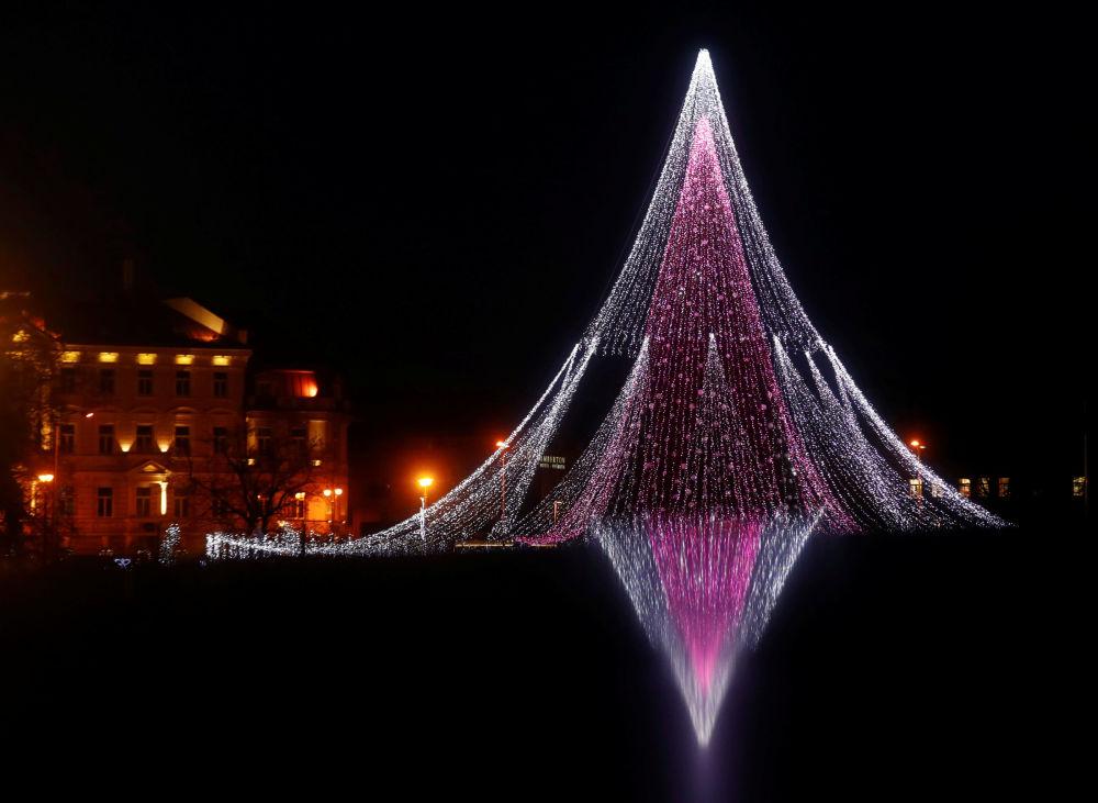 Ziemassvētku egle Viļņā