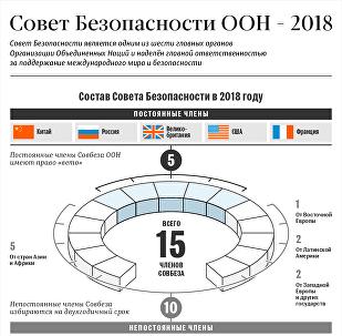 Совет безопасности ООН - 2018