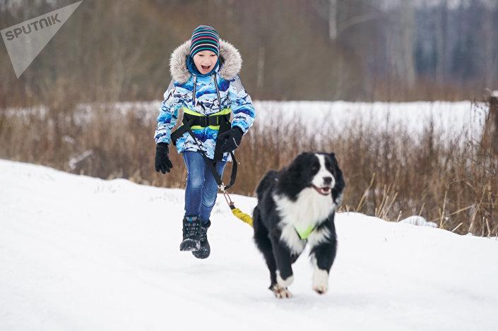 Густав-Эрнест, сын Гиртса, занимается каникроссом - бегом человека с собакой