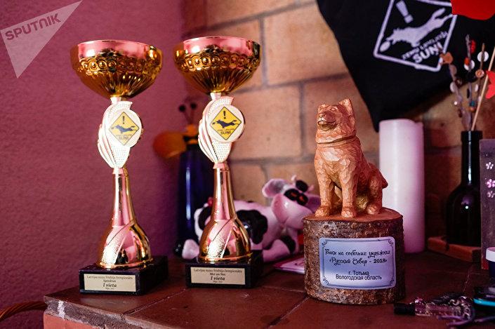 Призы за победу в гонках на собачьих упряжках