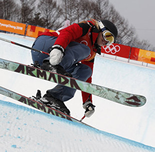 Лыжница Элизабет Суэйни