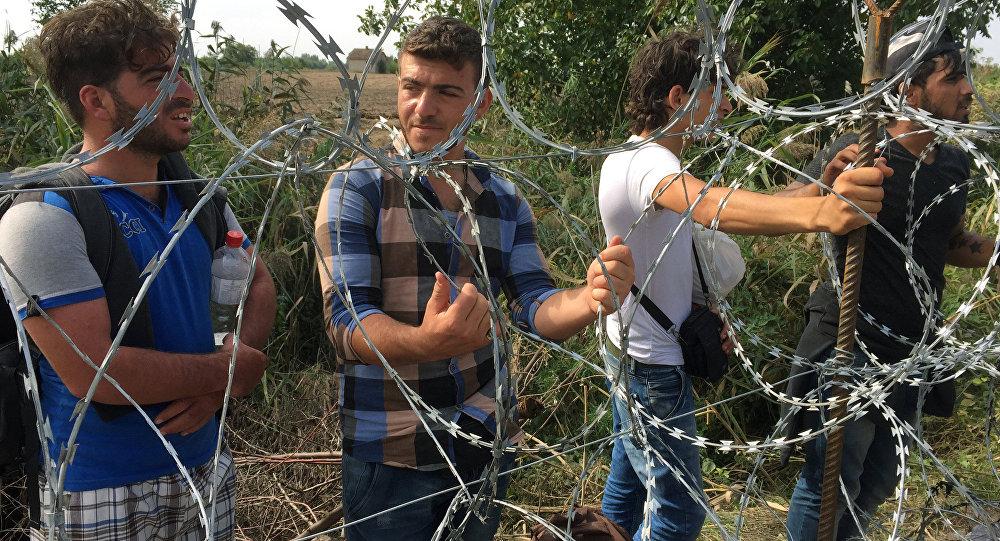 Žogs pie Serbijas un Ungārijas robežas.  Foto no arhīva