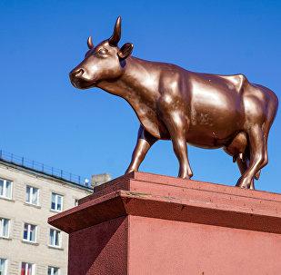 Корова-колосс