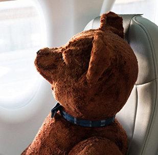 Плюшевый медведь в самолете