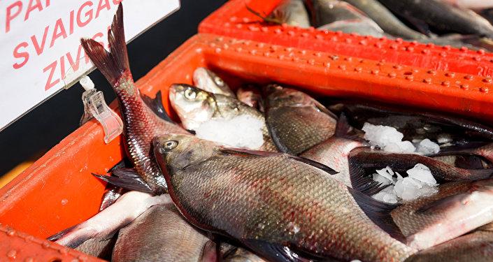 Продажа свежей рыбы