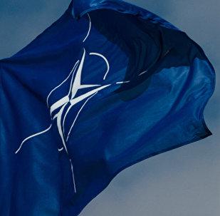 Флаг Организации Североатлантического договора (НАТО)
