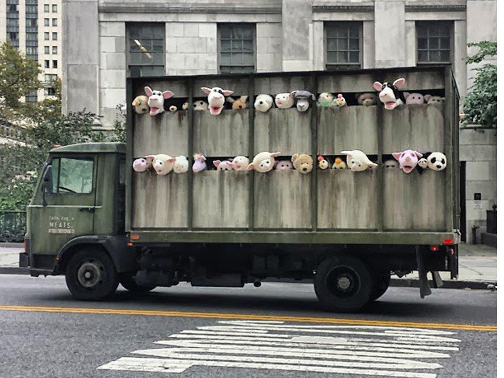 Ņujorkas ielās bija sastopama mašīna, kas veda uz kautuvi plīša govis, vistas, sivēnus un jērus. Ar šādu oriģinālu paņēmienu Benksijs atgādināja, cik dzīvnieki ik dienas tiek nogalināti, lai pabarotu cilvēci